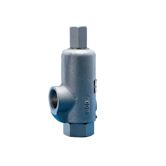 Models 71S, 171, 171P and 171S Safety Relief Valves