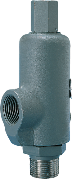 Models 264/265/266/267 Safety Relief Valves
