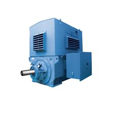 Hyundai Medium Voltage Motors Totally Enclosed & Weather-Proof